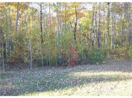 Home Or Business Lot : Pittsfield : Somerset County : Maine