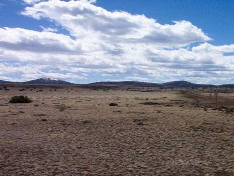 10 Acres - $14,950 : Sanders : Apache County : Arizona
