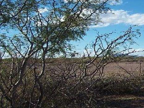 Unit 39 Block 4 Lot 4-$4,950 : Deming : Luna County : New Mexico