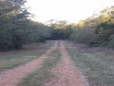 Section 2 Lot 117 - $4,950 : Austin : Bastrop County : Texas