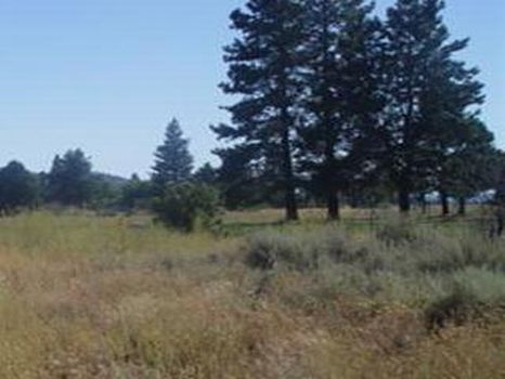 Block 15 Lot 20 - $3,950 : Sprague River : Klamath County : Oregon