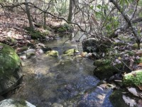 11.91 Acres, Wooded & Private : Pikeville : Bledsoe County : Tennessee