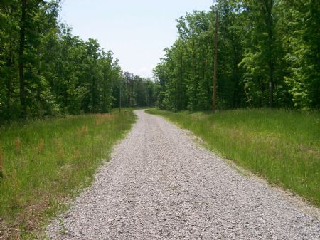 5.29 Acres..wooded..private : Pikeville : Bledsoe County : Tennessee