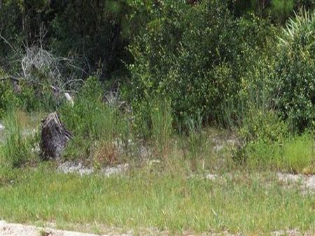 Lot 25 Northwood, Deland, Florida : Deland : Volusia County : Florida