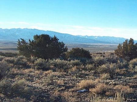 Unit 2 Block B Lot 5 - $6,500 : Elko : Elko County : Nevada