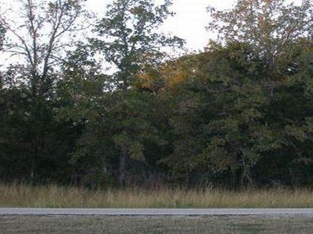 Lake Thunderbird Section 1 Lot 4 : Austin : Bastrop County : Texas