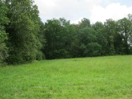 Spectacular Value : Bear Creek : Chatham County : North Carolina