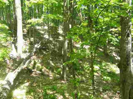 104 Blue Road  Mls #1059569 : Nisula : Houghton County : Michigan