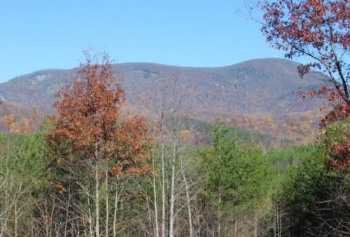 7 Acres Near Glassy Mountain : Landrum : Greenville County : South Carolina