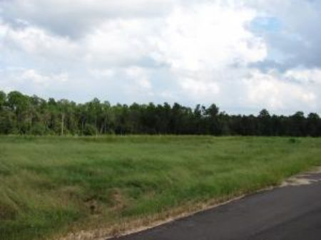 5.23 Acre Estate-sized Lot : Carriere : Pearl River County : Mississippi