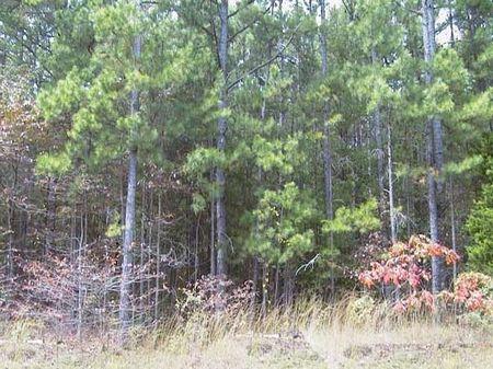 Conmack 2nd Addition Block 3 Lot 53 : Woodland Hills : Sharp County : Arkansas