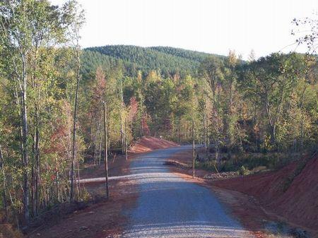 Hillabee Creek- 10+ acre lots : Alexander City : Tallapoosa County : Alabama