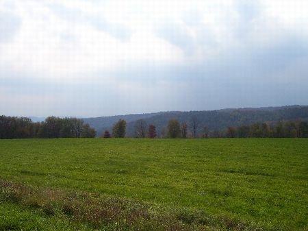 Six 5 Acre Buildable Parcels : Walton : Delaware County : New York