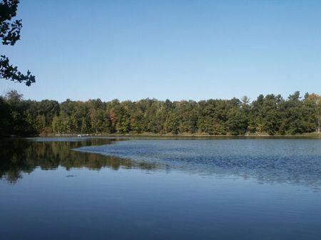 Lakefront Now $29,900 : Chetek : Rusk County : Wisconsin