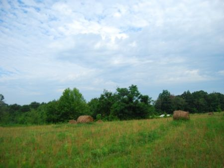 3.74 Acres Near Lake Blalock : Chesnee : Spartanburg County : South Carolina