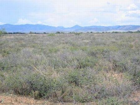 Cochise College Park Unit 6 Lot 390 : Douglas : Cochise County : Arizona