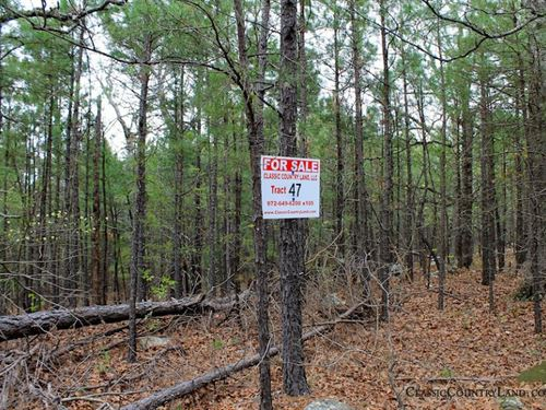Trophy Ridge Iii Mountain Land 47 : Clayton : Pushmataha County : Oklahoma