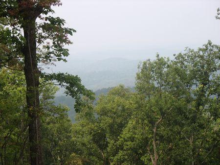 Land For Sale : Ellijay : Gilmer County : Georgia