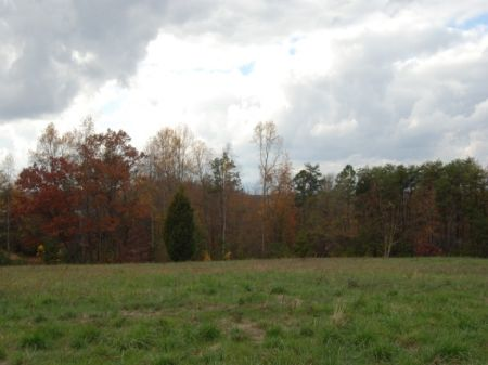5.02 Acres : Chesnee : Spartanburg County : South Carolina