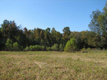 Refuge Farm : Decatur : Morgan County : Alabama