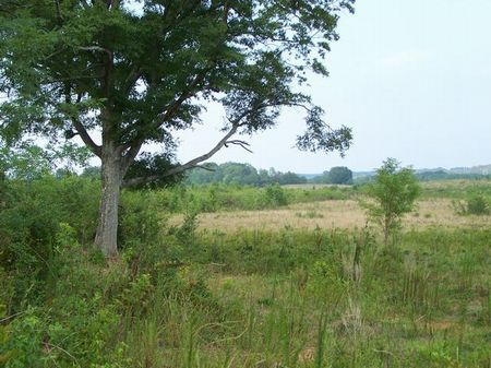 Amason Road : Lineville : Clay County : Alabama