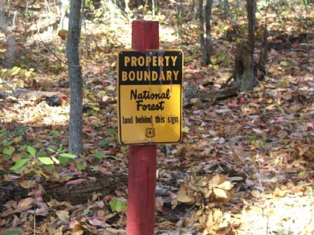 6.1 Acres Talladega National Forest : North Perry : Perry County : Alabama