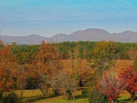 3.5-acre Mini-farm : Campobello : Spartanburg County : South Carolina