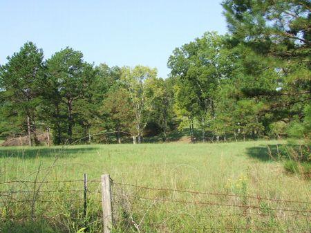 Mossy Oak Farms Tract 2 : Hope Hull : Montgomery County : Alabama