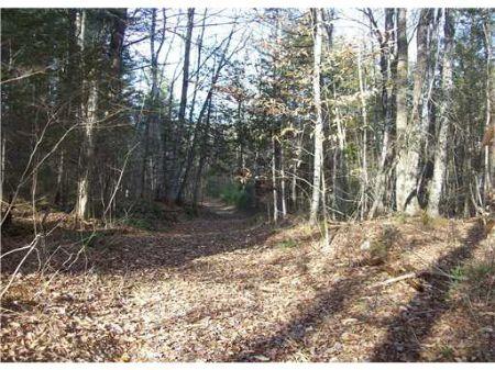 11 Acre Hardwood Ridge : Hartland : Somerset County : Maine
