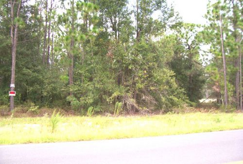 16.05 Acres In Keystone (a-210) : Keystone Heights : Clay County : Florida