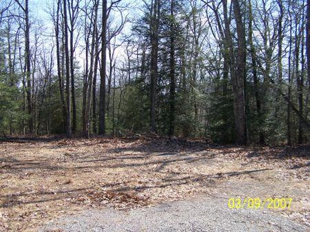 9.64 Ac : Elk Creek : Grayson County : Virginia
