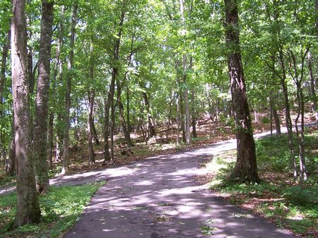 5 Ac In Pt Lookout Va Mtn Land : Independence : Grayson County : Virginia