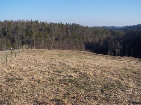 5.83 Ac Mtn Land, Buildable, Wooded : Fries : Grayson County : Virginia