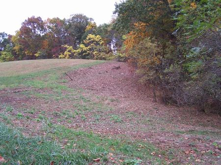6 Ac Mtn Land, Buildable, Views : Fries : Grayson County : Virginia