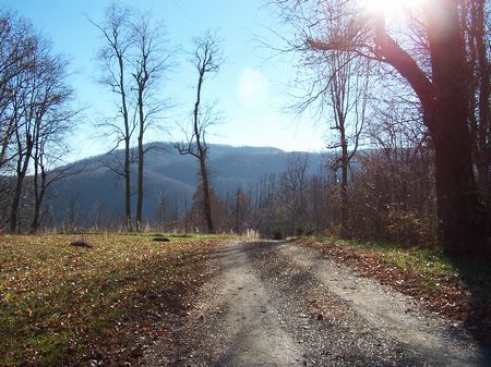2.9 Ac Hidden Valley Lake Wooded : Independence : Grayson County : Virginia