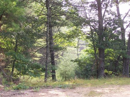 7 Tracts Mtn Land Buildable Private : Independence : Grayson County : Virginia