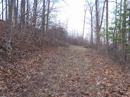 Half Acre Lot, Wooded, Views : Galax : Grayson County : Virginia