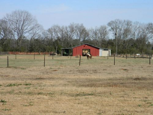 Homeplace On 20 Ac. Equestrian Farm : Wetumpka : Elmore County : Alabama