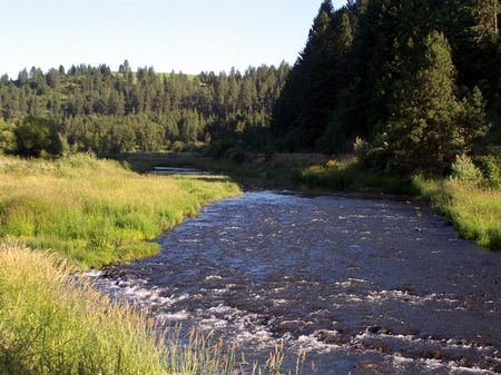 9 Acre River Adjacent Homesite : Colfax : Whitman County : Washington