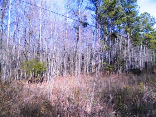 4.16 Acre Home Site With Hardwoods : Lexington : Oglethorpe County : Georgia