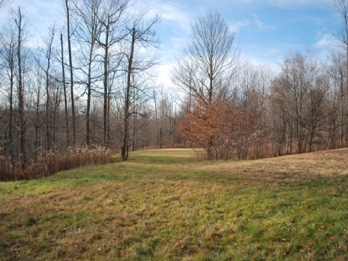 Lot 19, The Woods At Duck Harbor : Equinunk : Wayne County : Pennsylvania
