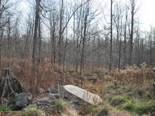 Lot 55, The Woods At Duck Harbor : Equinunk : Wayne County : Pennsylvania