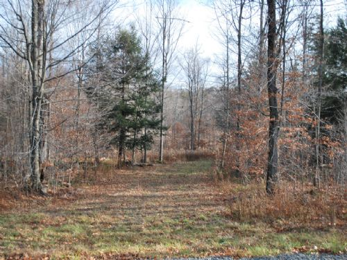 Lot 46, The Woods At Duck Harbor : Equinunk : Wayne County : Pennsylvania