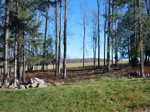 Lot 1, The Paddocks At Duck Harbor : Equinunk : Wayne County : Pennsylvania