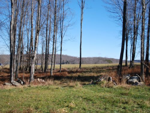 Lot 2, The Paddocks At Duck Harbor : Equinunk : Wayne County : Pennsylvania