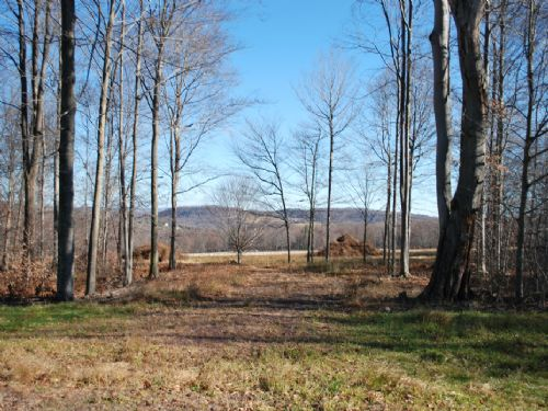 Lot 6, The Paddocks At Duck Harbor : Equinunk : Wayne County : Pennsylvania