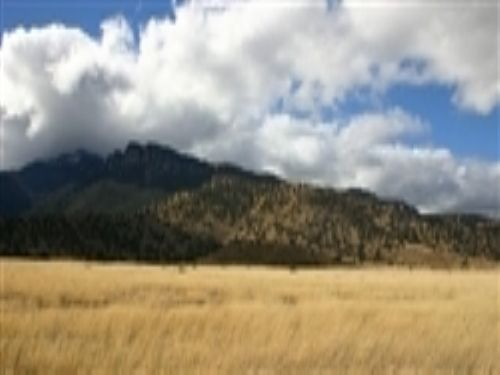 Yucca Valley Ranch. $150/month : Lake Havasu : Mohave County : Arizona