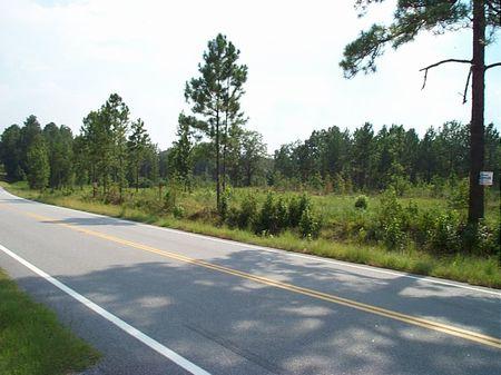 17.25 Acres - Paved Road Frontage : Kite  : Johnson County : Georgia
