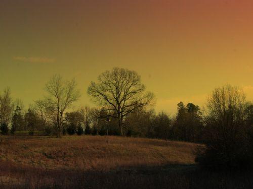 18.5 Acre Farm Near Interstate : Cowpens : Spartanburg County : South Carolina