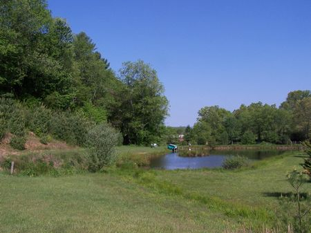 5.94 Ac Mtn Land, Views, Pond : Fries  : Grayson County : Virginia